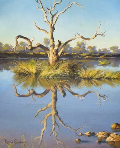 Roost Tree – Birdsville Wetlands