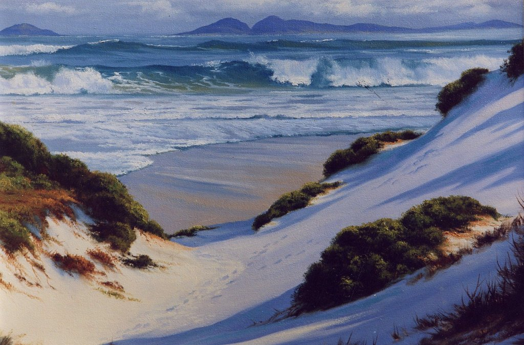 Steep Dunes – Nth Coast