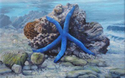 UNDERWATER STILL LIFE WITH BLUE LINKIA SEA STAR.